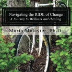 Navigating_the_R I D_Cover_for_Kindle (2) banner
